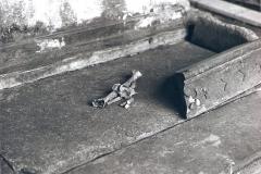 Ossa rinvenute nella tomba probabilmente appartenute ad un Sacerdote.
